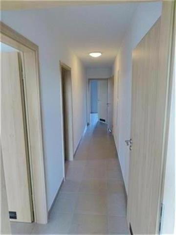 Appartement - Freylange - #4073396-7